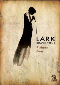 lark-burn